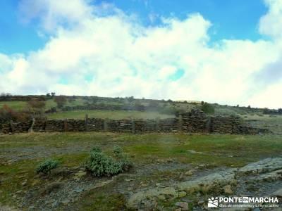 Hayedo Tejera Negra - Fiesta Almudena; rutas montaña cerca madrid viajes de lujo